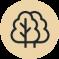 piquet galvanisé arbre ornemental